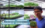【農務系】90後青年志在做農夫,上網睇片自學水耕種植開工場