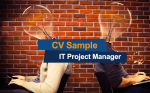 CV Sample (IT Project Manager)